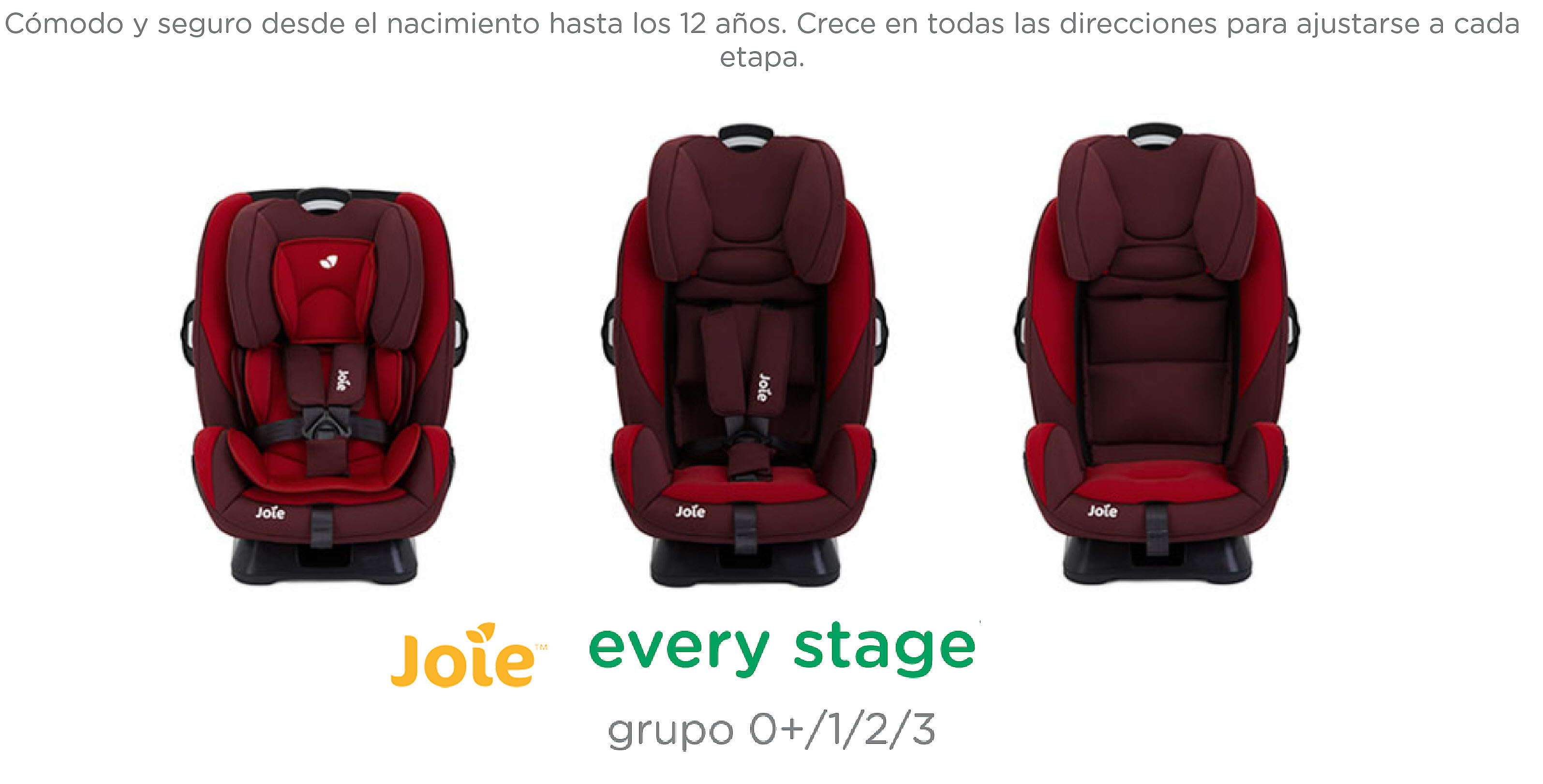 SILLA AUTO JOIE EVERY STAGE